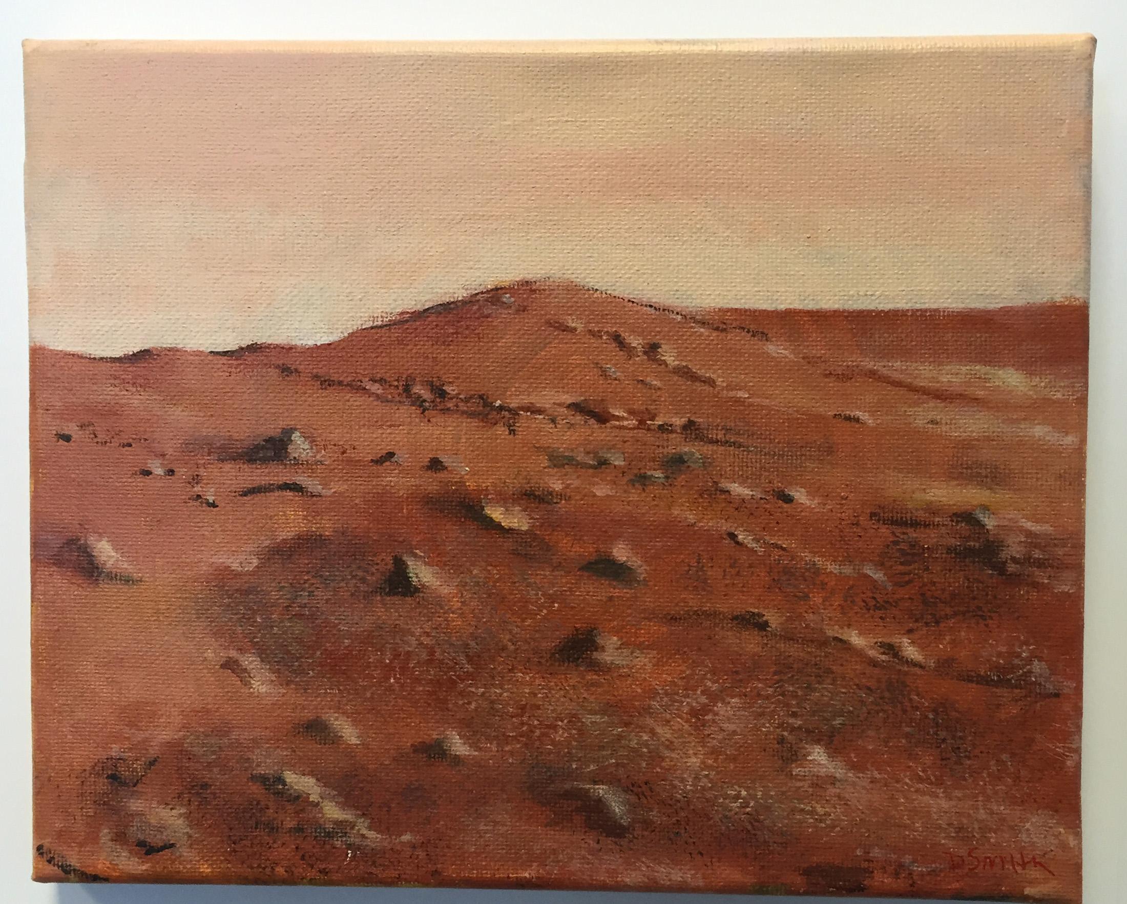 MARSCAPE1